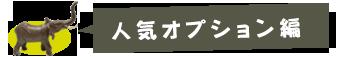 大好きバリ!!の人気オプションTOP5