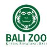 バリズーロゴ Balizoo