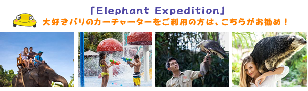 Exclusive Elephant Expedition バリズー Balizoo|バリ島オプション