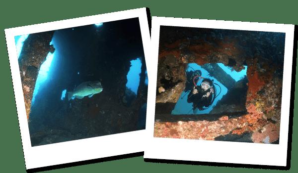 FUNダイビング トランベン|ダイブ センター&コース Nautica Bali