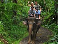 エレファント・サファリ Elephant Safari