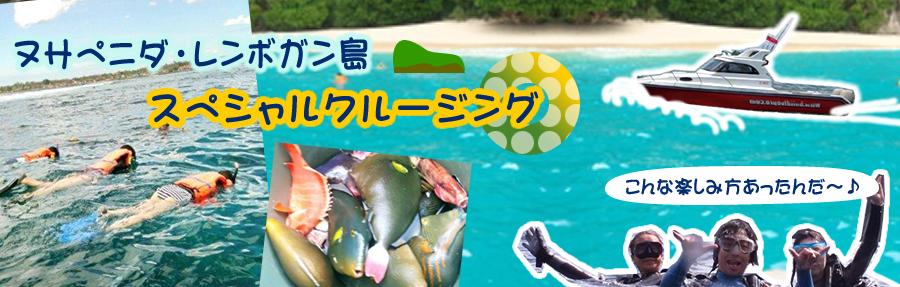 ヌサペニダ・レンボガン島 スペシャルクルージング