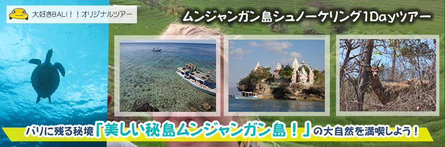 バリ島北西部の秘島:ムンジャンガン島シュノーケリング1Dayツアー