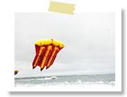 フライフィッシュ|バリコラール社(ヌサドゥア・タンジュンベノアの海で)