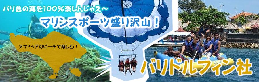 バリドルフィン社(ヌサドゥア・タンジュンベノアの海で)|バリ島海で楽しむマリンスポーツ オプション