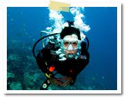 ダイビング|スランガンダイブ社(サヌール近郊)|バリ島のマリンスポーツ