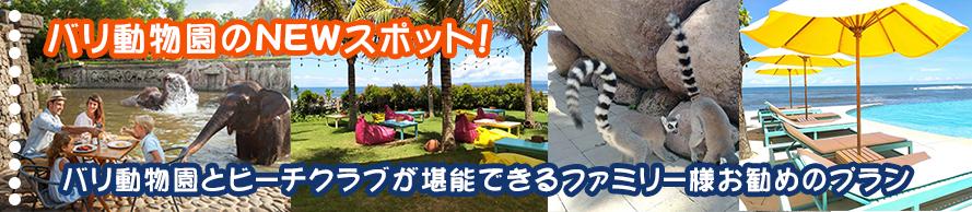 バリ動物園とビーチクラブが堪能できるファミリー様お勧めのプラン|大好きバリ!!オプション