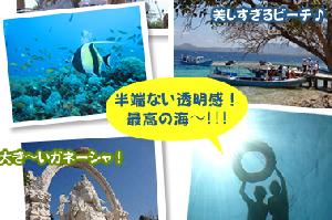 バリ島北西部の秘島:ムンジャンガン島シュノーケリング1Dayツアー|大好きバリ!!オプション予約